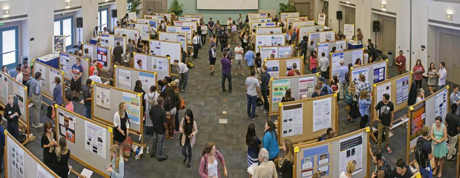Student Displays at Undergraduate Research Colloquium